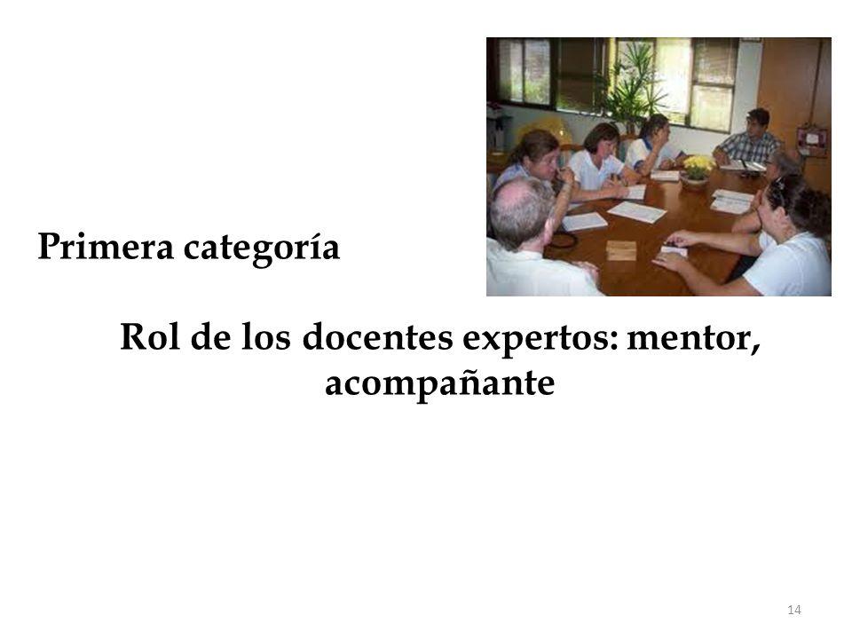 Rol de los docentes expertos: mentor, acompañante