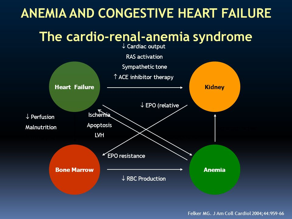 ANEMIA AND CONGESTIVE HEART FAILURE The cardio-renal-anemia syndrome