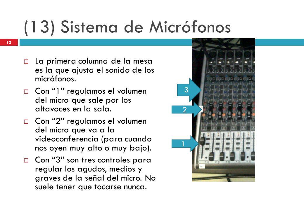(13) Sistema de Micrófonos