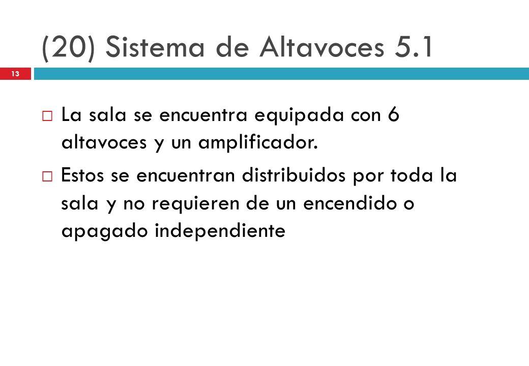 (20) Sistema de Altavoces 5.1