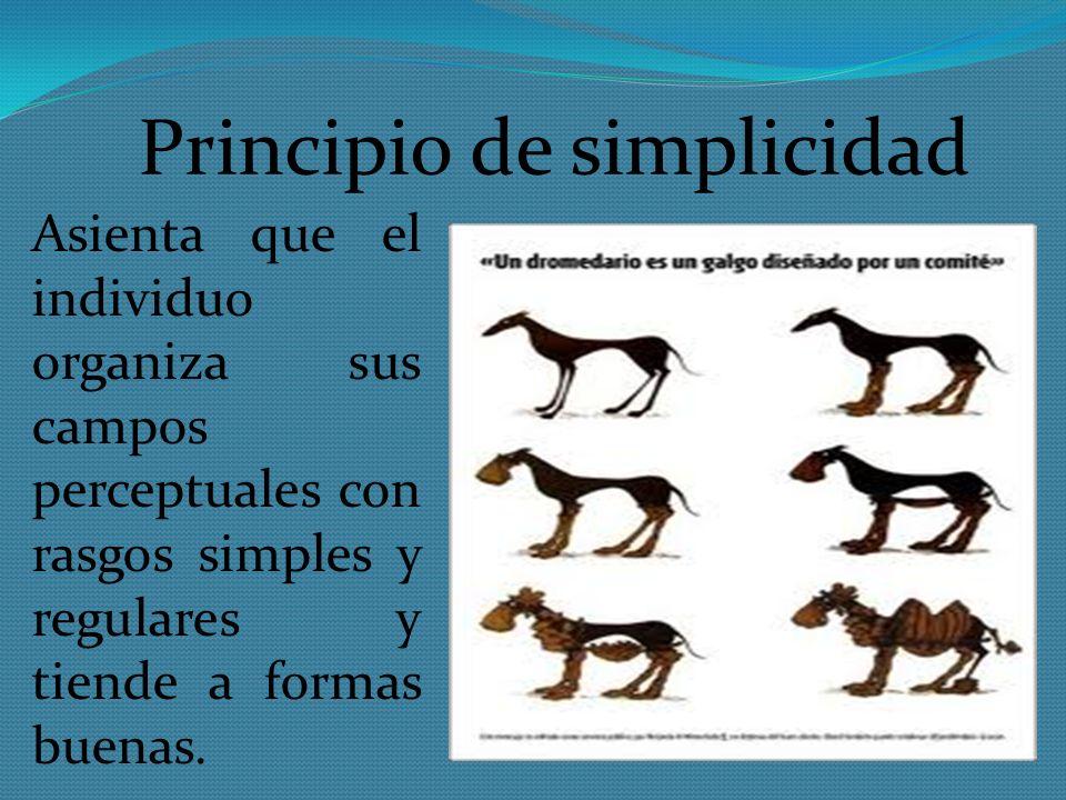 Principio de simplicidad