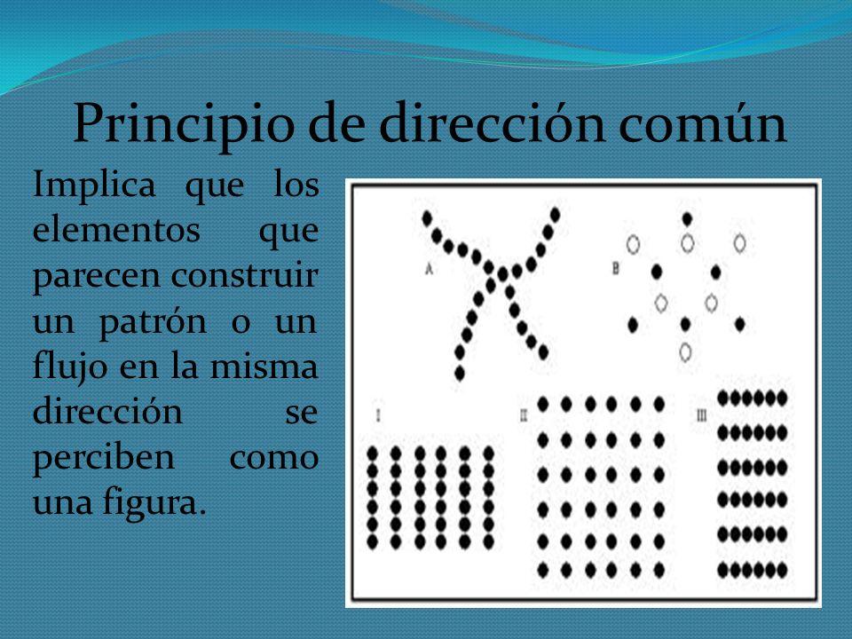 Principio de dirección común