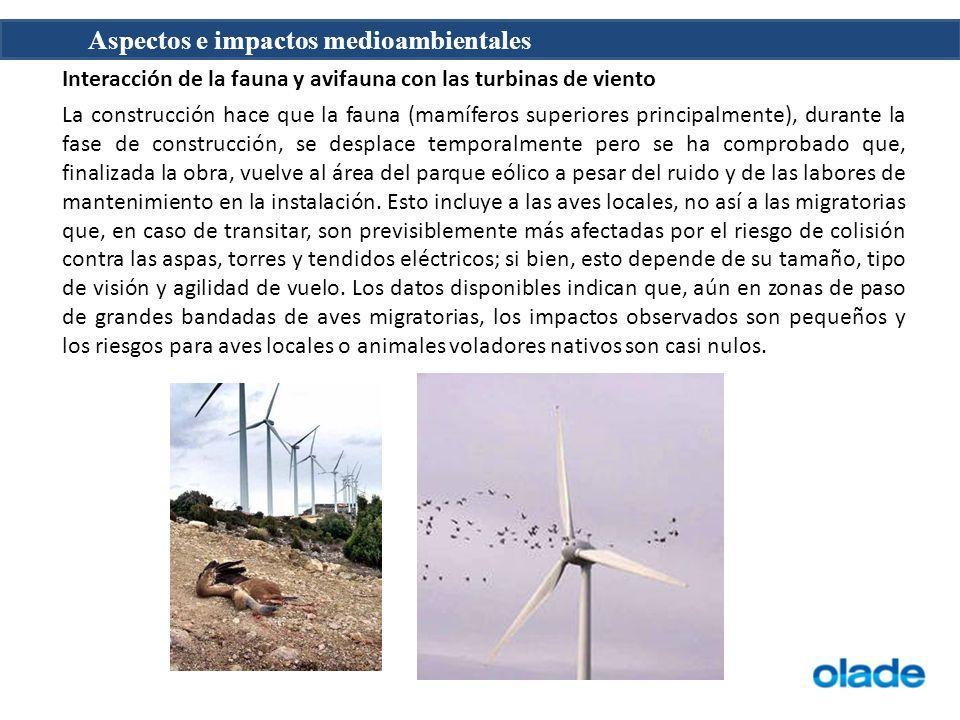 Interacción de la fauna y avifauna con las turbinas de viento