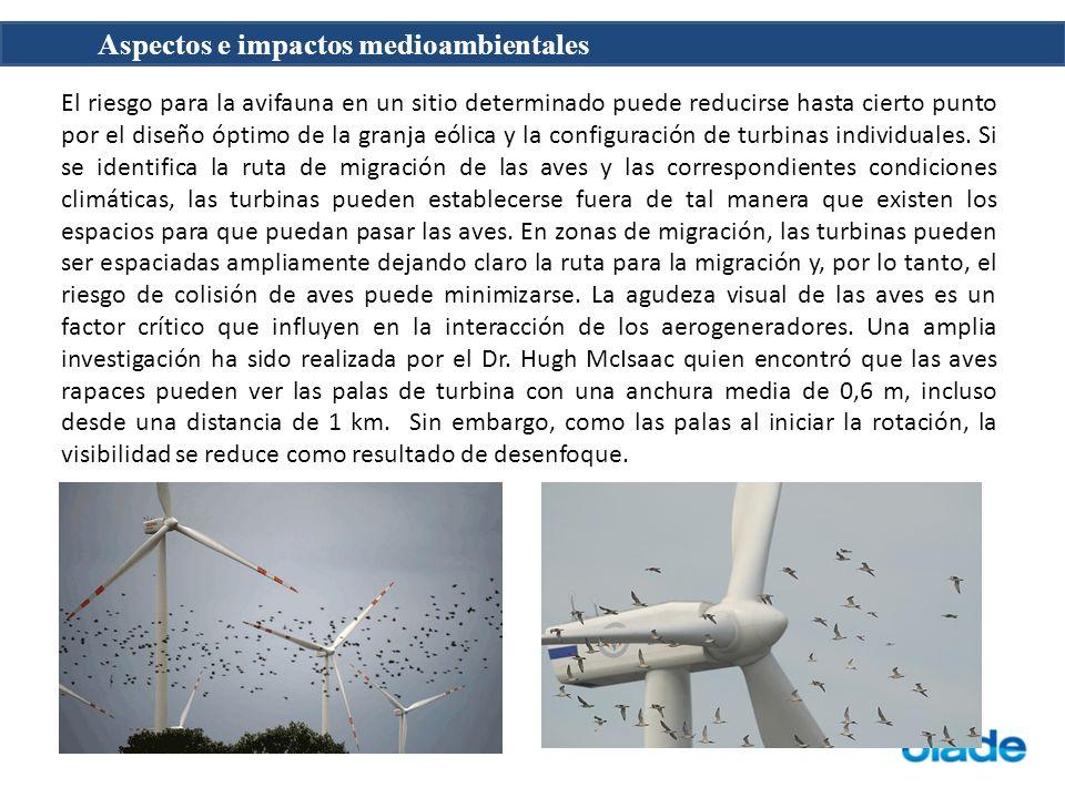 El riesgo para la avifauna en un sitio determinado puede reducirse hasta cierto punto por el diseño óptimo de la granja eólica y la configuración de turbinas individuales.