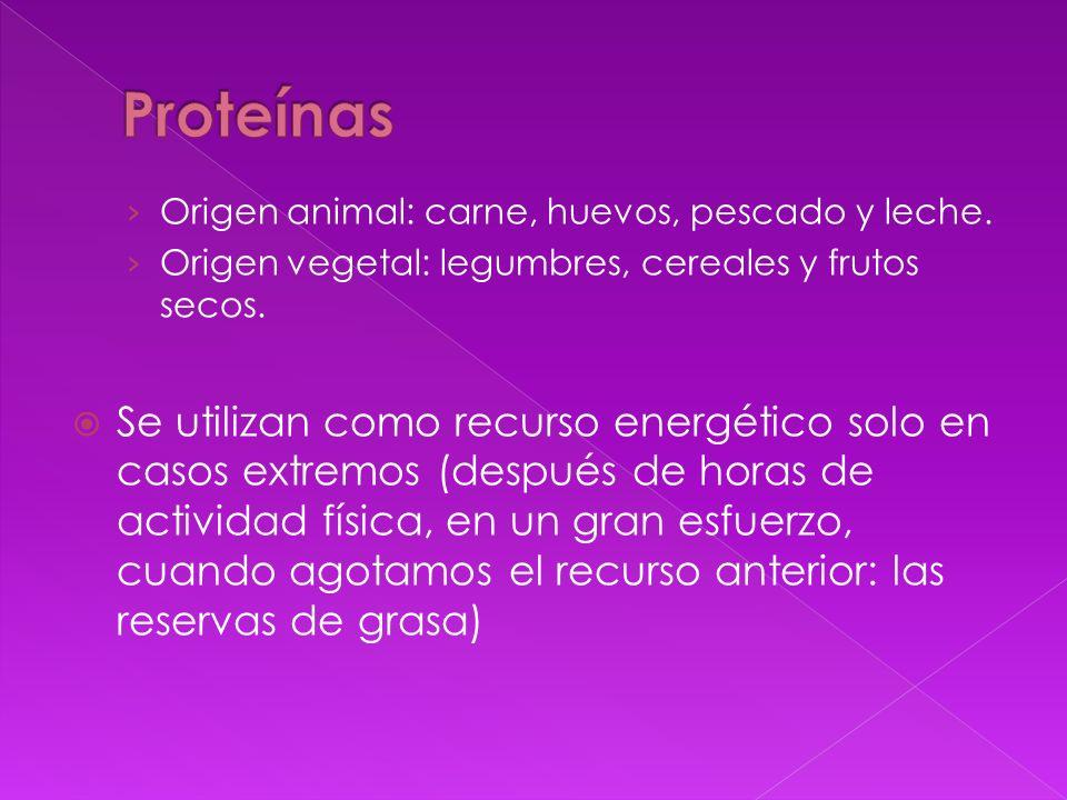 Proteínas Origen animal: carne, huevos, pescado y leche. Origen vegetal: legumbres, cereales y frutos secos.