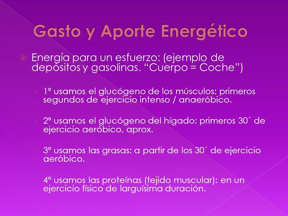 Gasto y Aporte Energético