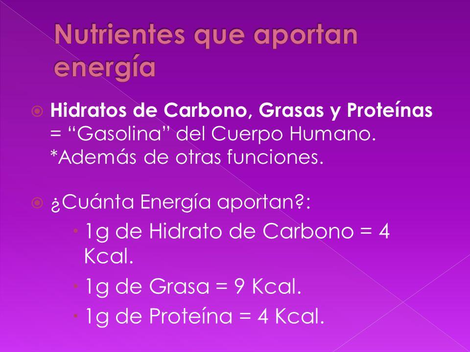 Nutrientes que aportan energía