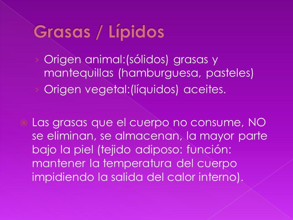 Grasas / Lípidos Origen animal:(sólidos) grasas y mantequillas (hamburguesa, pasteles) Origen vegetal:(líquidos) aceites.