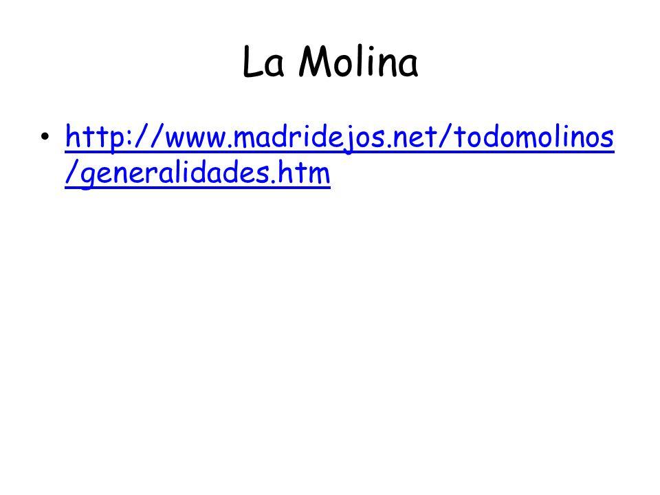 La Molina http://www.madridejos.net/todomolinos/generalidades.htm