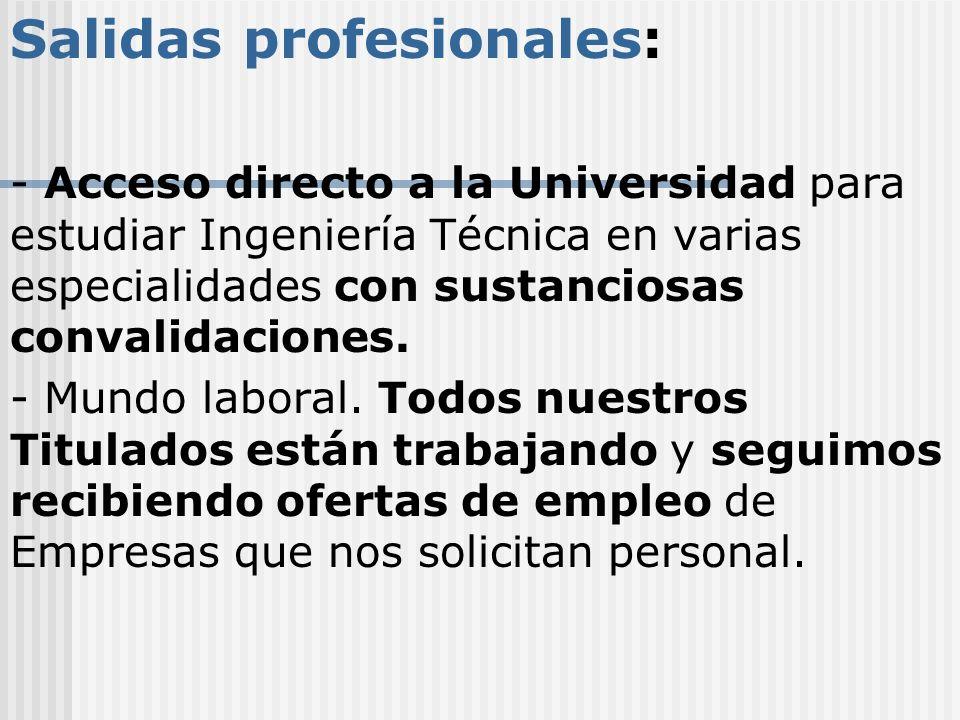 Salidas profesionales: