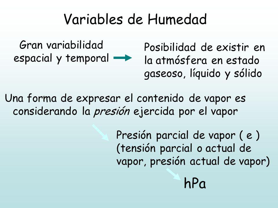 Gran variabilidad espacial y temporal