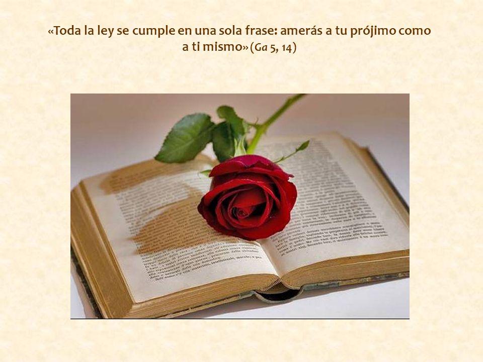 «Toda la ley se cumple en una sola frase: amerás a tu prójimo como a ti mismo» (Ga 5, 14)