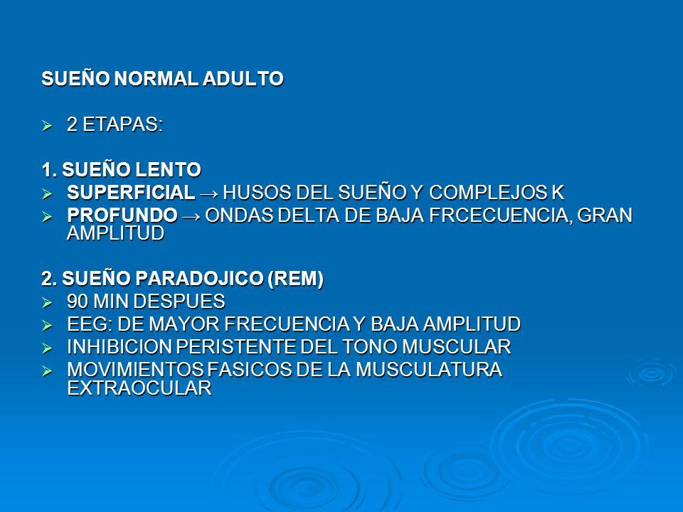SUEÑO NORMAL ADULTO 2 ETAPAS: 1. SUEÑO LENTO. SUPERFICIAL → HUSOS DEL SUEÑO Y COMPLEJOS K.