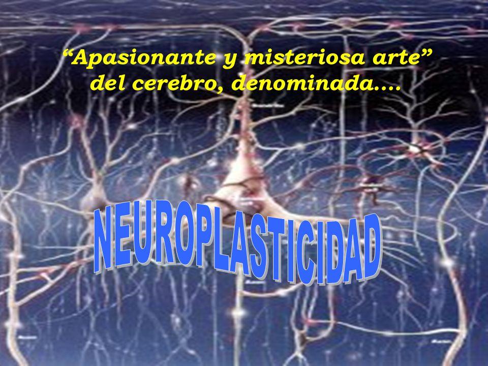 Apasionante y misteriosa arte del cerebro, denominada….