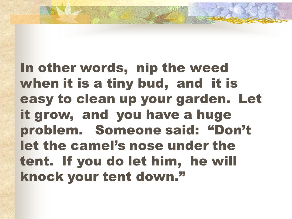 In other words, nip the weed when it is a tiny bud, and it is easy to clean up your garden.