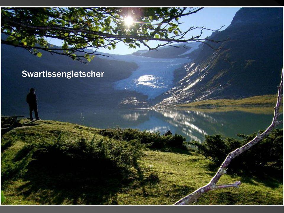 Swartissengletscher Knosjesfjorden