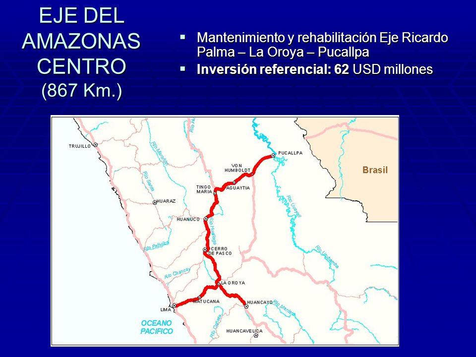 EJE DEL AMAZONAS CENTRO (867 Km.)