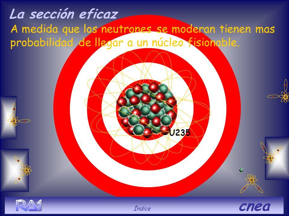 La sección eficaz U235. A medida que los neutrones se moderan tienen mas probabilidad de llegar a un núcleo fisionable.