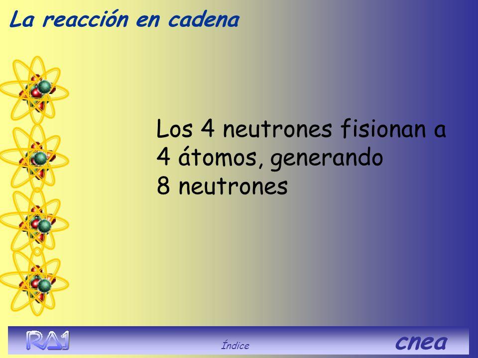 Los 4 neutrones fisionan a 4 átomos, generando 8 neutrones