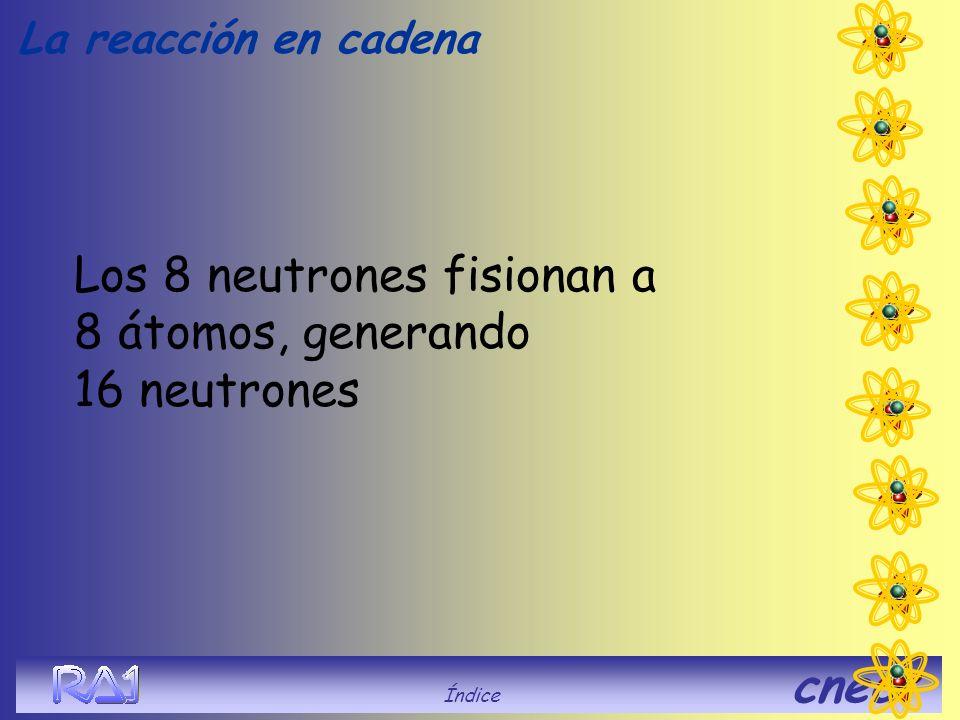Los 8 neutrones fisionan a 8 átomos, generando 16 neutrones