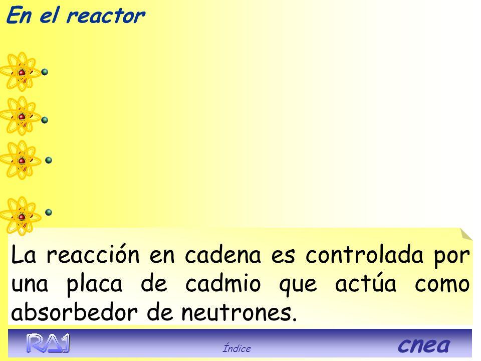 En el reactor La reacción en cadena es controlada por una placa de cadmio que actúa como absorbedor de neutrones.