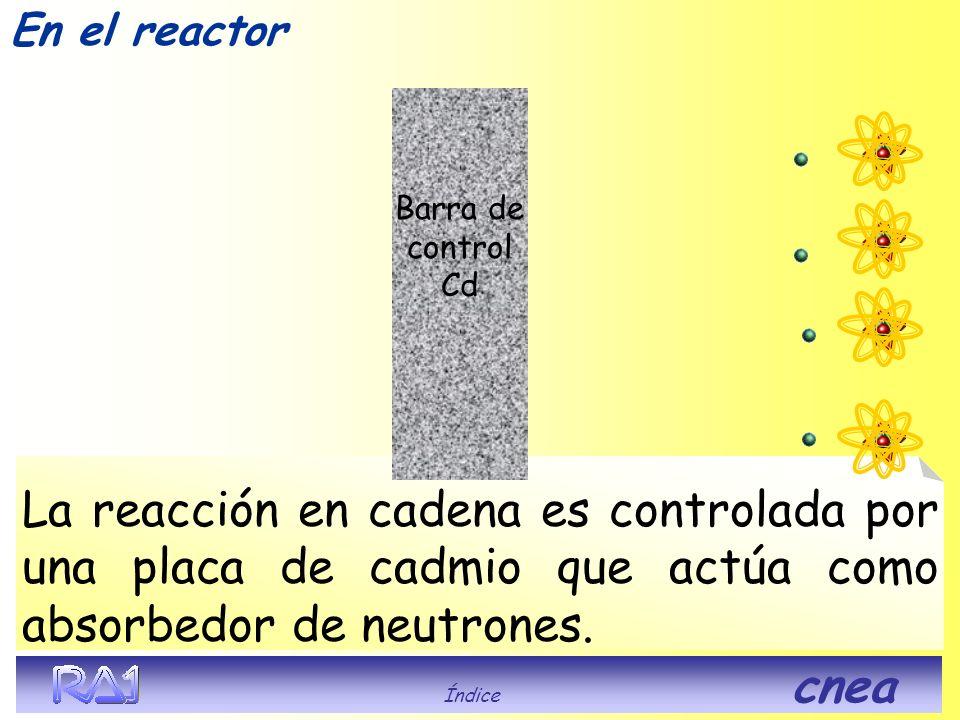 En el reactor Barra de control Cd. La reacción en cadena es controlada por una placa de cadmio que actúa como absorbedor de neutrones.