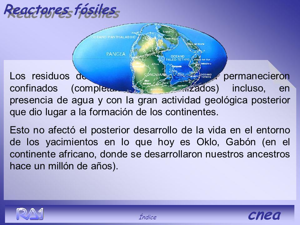 Reactores fósiles