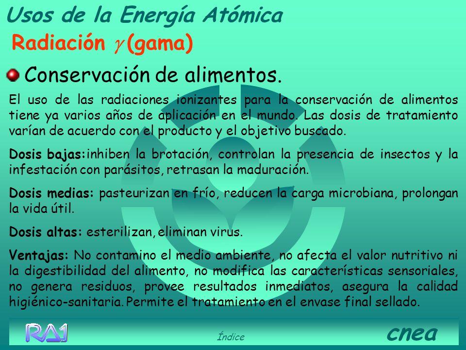 Usos de la Energía Atómica Radiación g (gama)