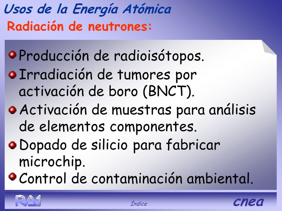 Producción de radioisótopos.