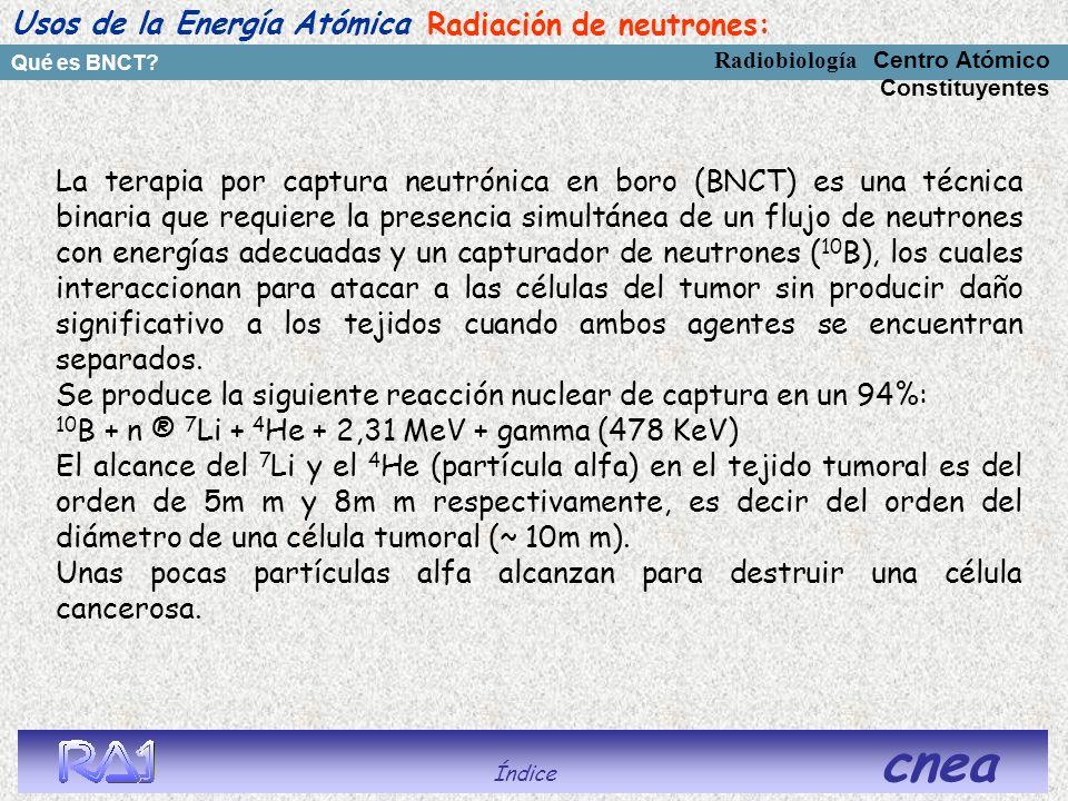 Usos de la Energía Atómica Radiación de neutrones: