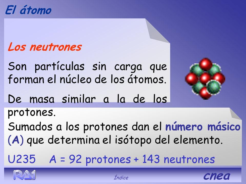Son partículas sin carga que forman el núcleo de los átomos.