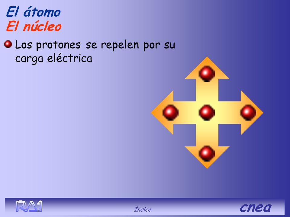 El átomo El núcleo Los protones se repelen por su carga eléctrica