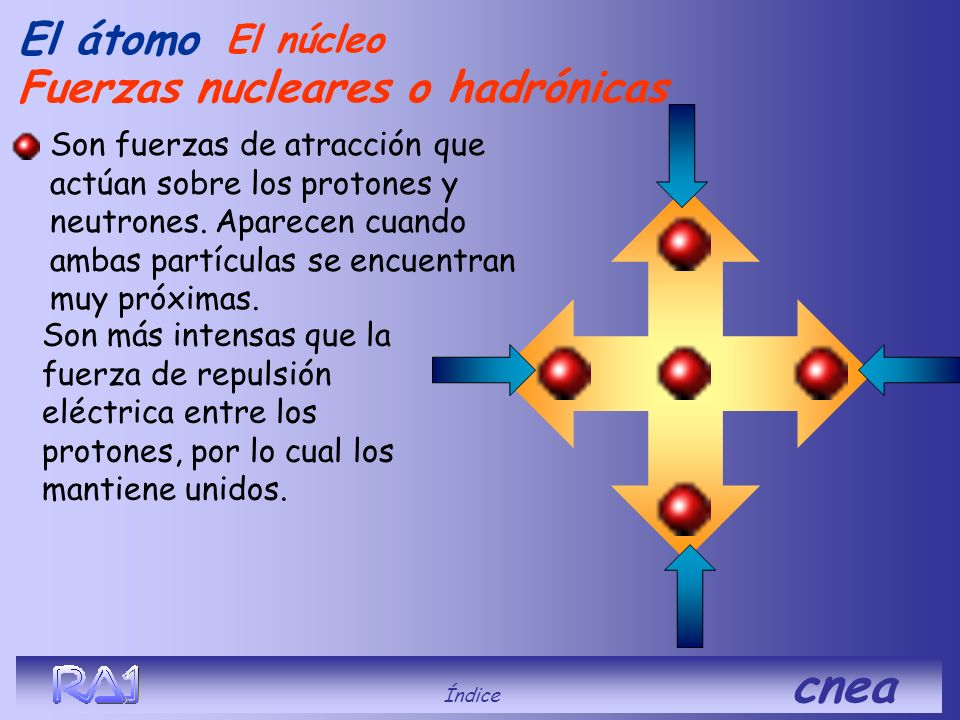 Fuerzas nucleares o hadrónicas