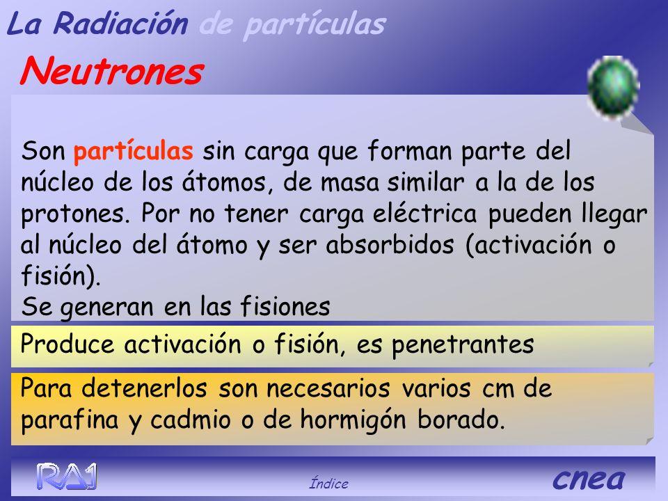 Neutrones La Radiación de partículas