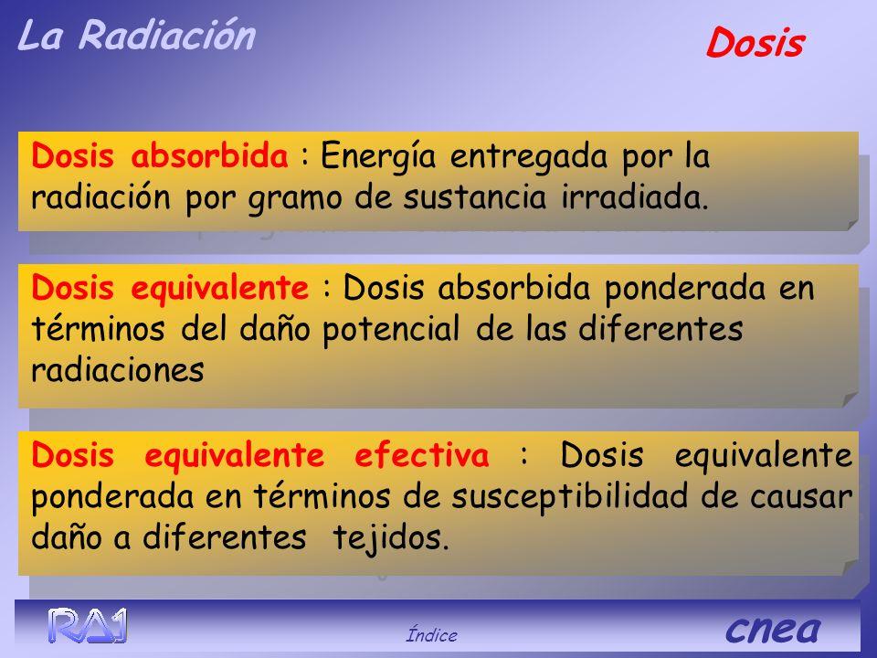 La Radiación Dosis. Dosis absorbida : Energía entregada por la radiación por gramo de sustancia irradiada.