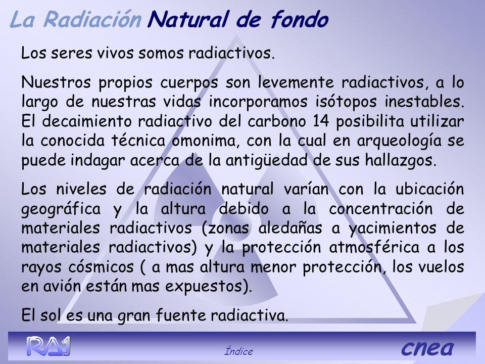 Natural de fondo La Radiación Los seres vivos somos radiactivos.