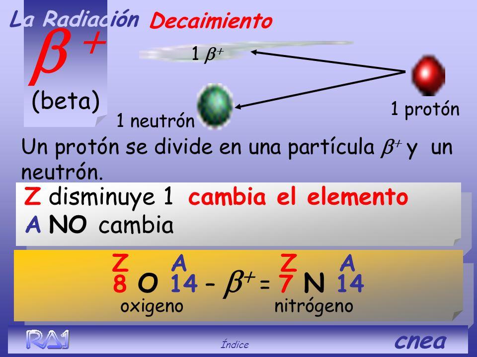 b + (beta) Z disminuye 1 cambia el elemento A NO cambia Z A Z A