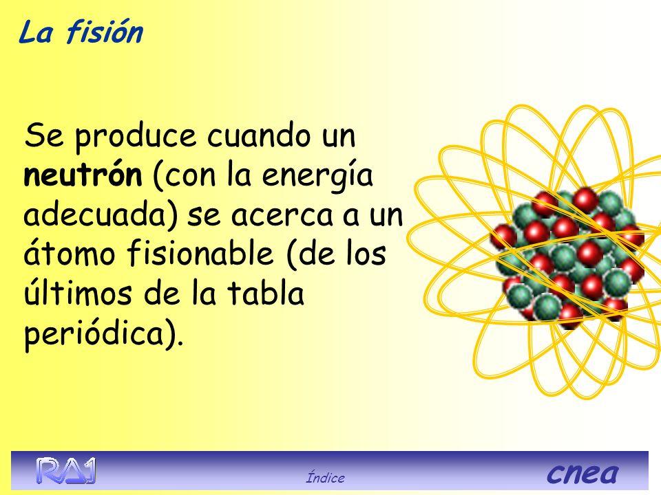 La fisión Se produce cuando un neutrón (con la energía adecuada) se acerca a un átomo fisionable (de los últimos de la tabla periódica).