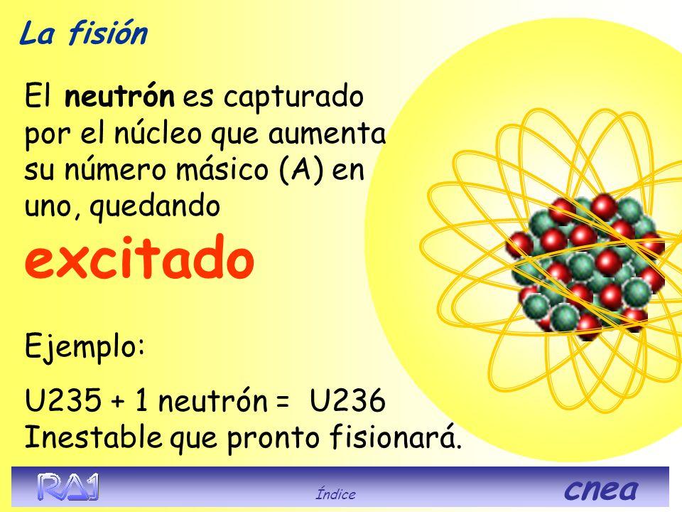U235 + 1 neutrón = U236 Inestable que pronto fisionará.
