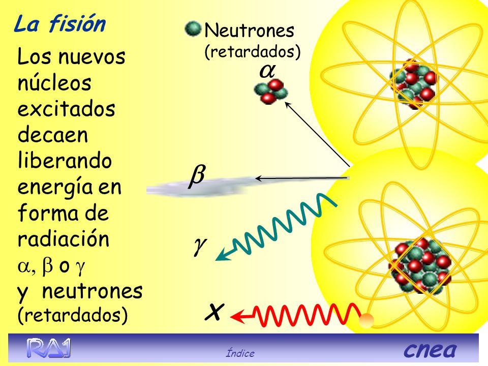 La fisión Neutrones (retardados)