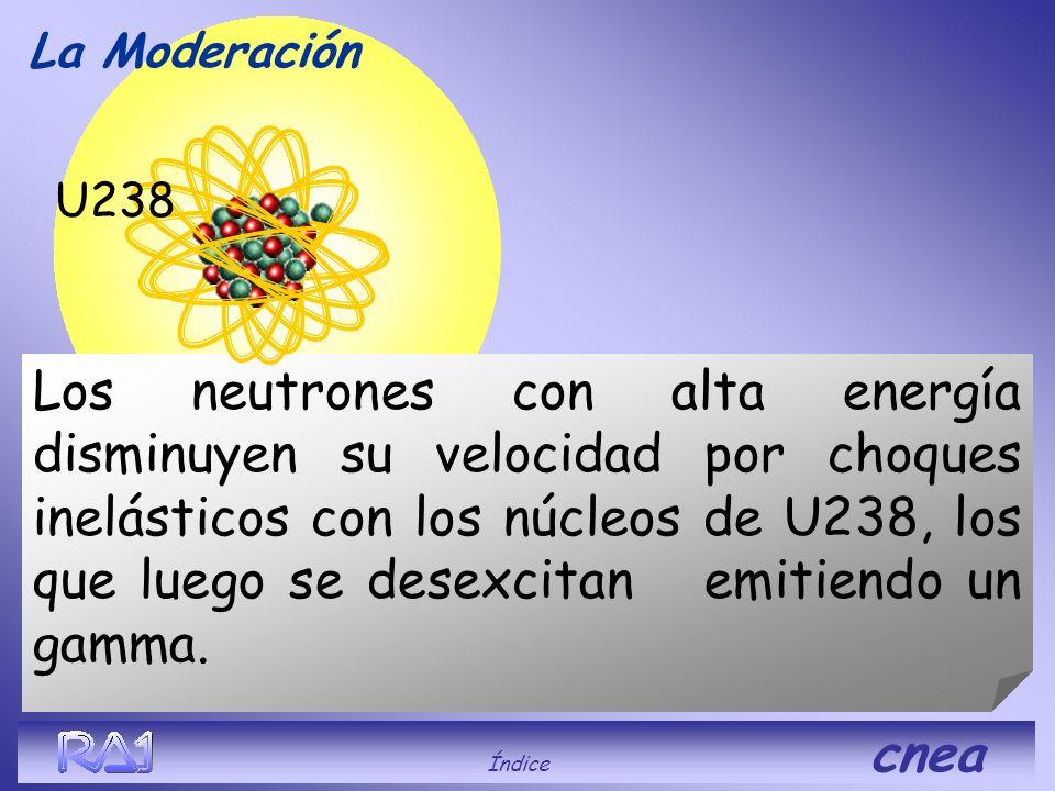 La Moderación U238.
