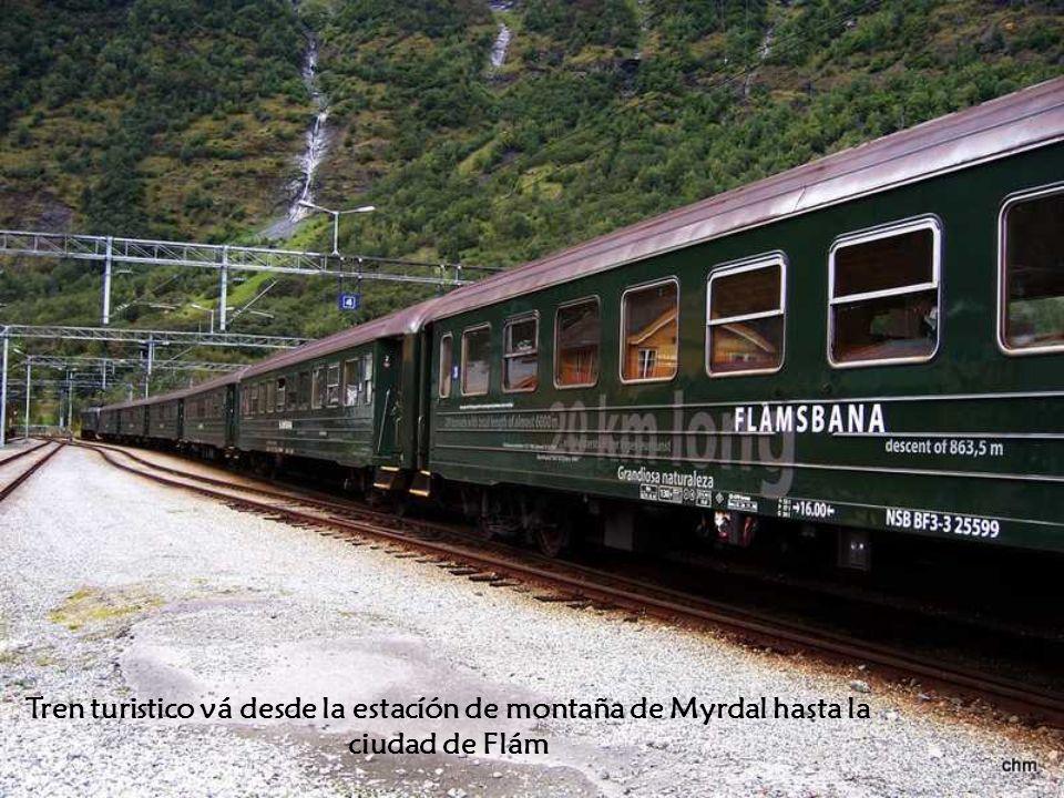 Tren turistico vá desde la estacíón de montaña de Myrdal hasta la ciudad de Flám