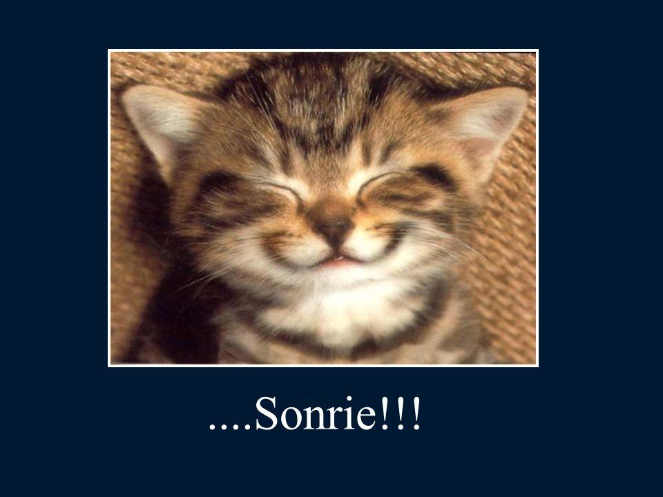 ....Sonrie!!!