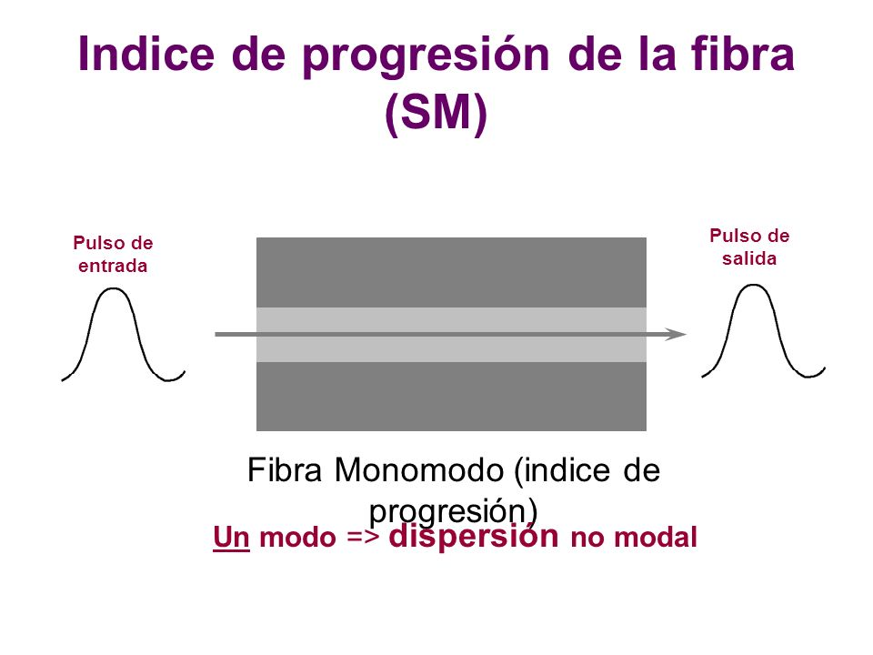 Indice de progresión de la fibra (SM)