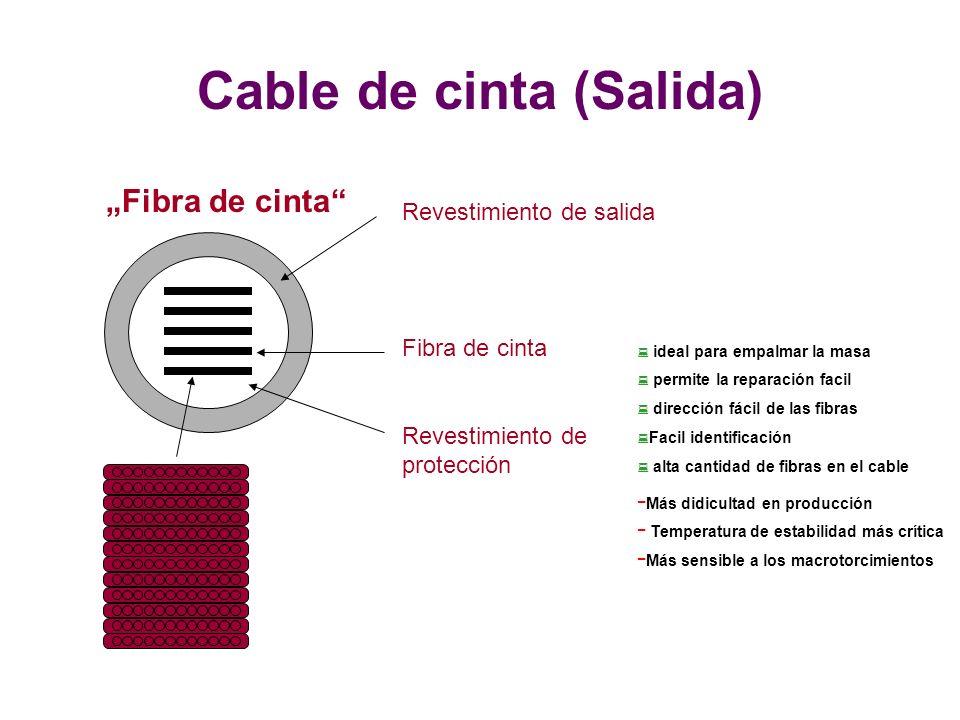 Cable de cinta (Salida)