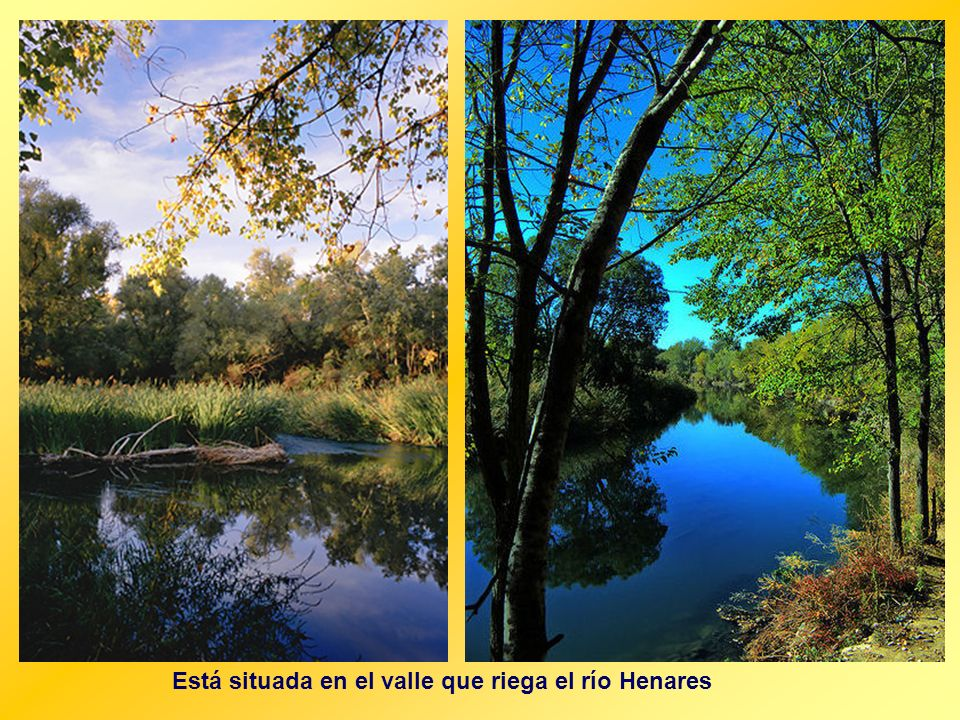 Está situada en el valle que riega el río Henares