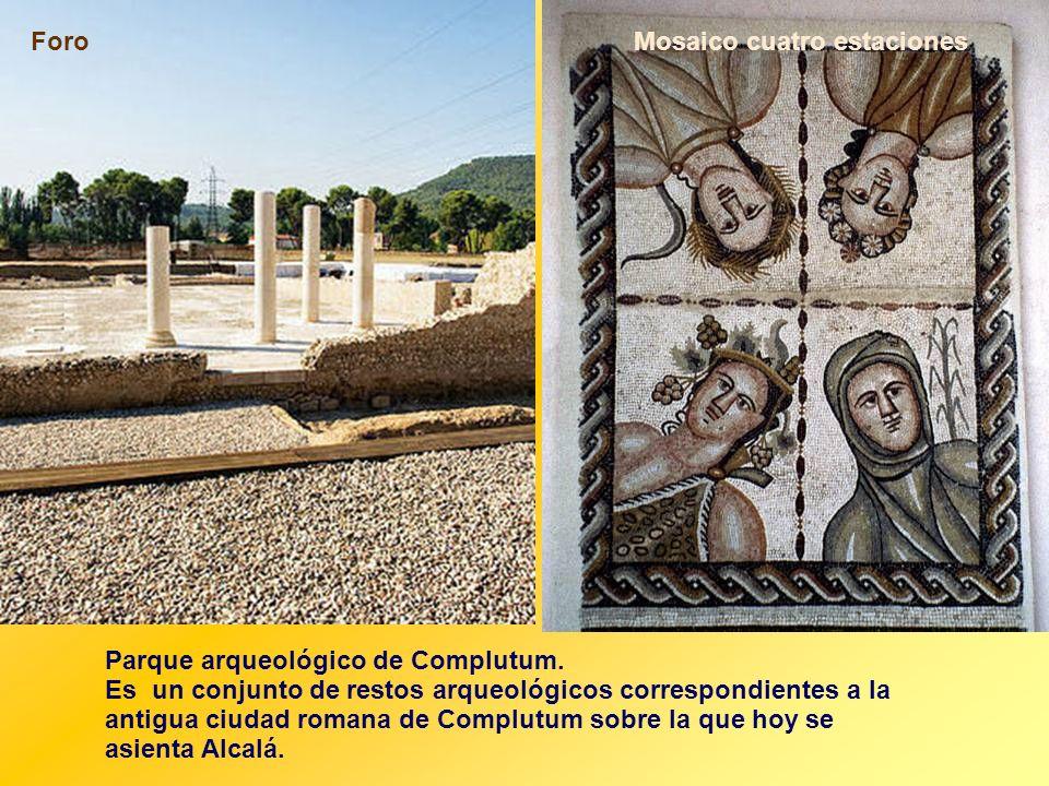 Foro Mosaico cuatro estaciones. Parque arqueológico de Complutum.