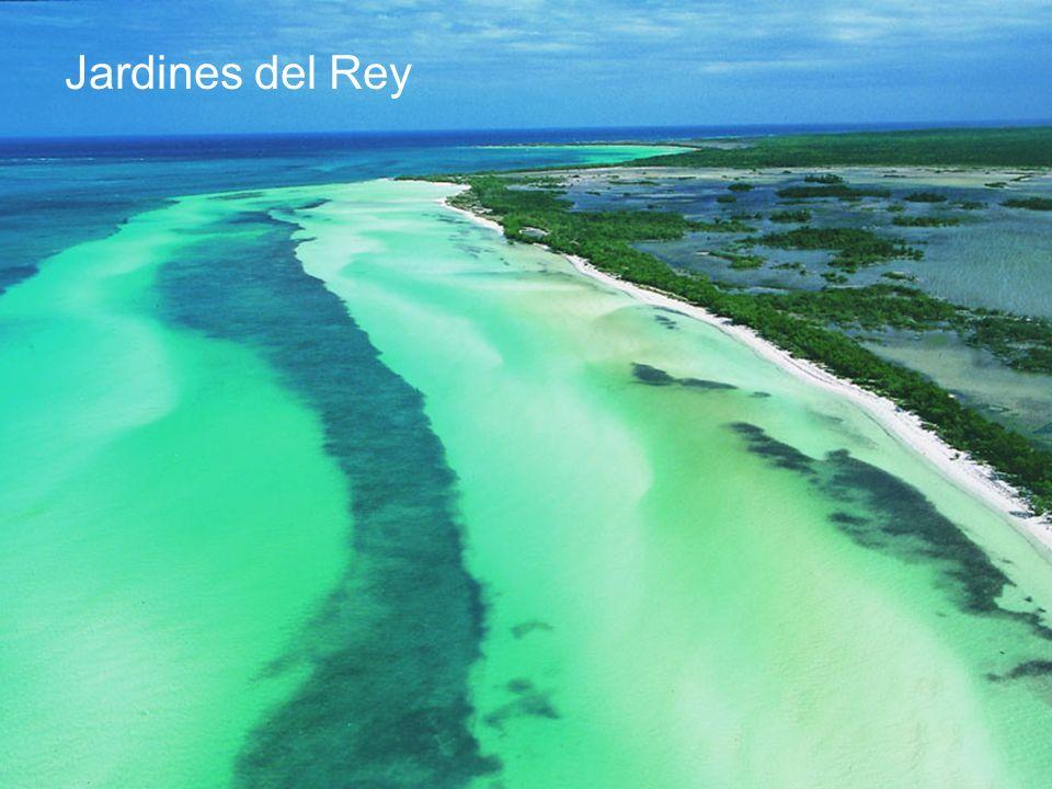 Jardines del Rey Tambien en este archipiélago encontramos a Cayo Coco y Cayo Guillermo localizados al norte de Ciego de Avila.