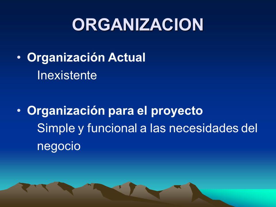 ORGANIZACION Organización Actual Inexistente