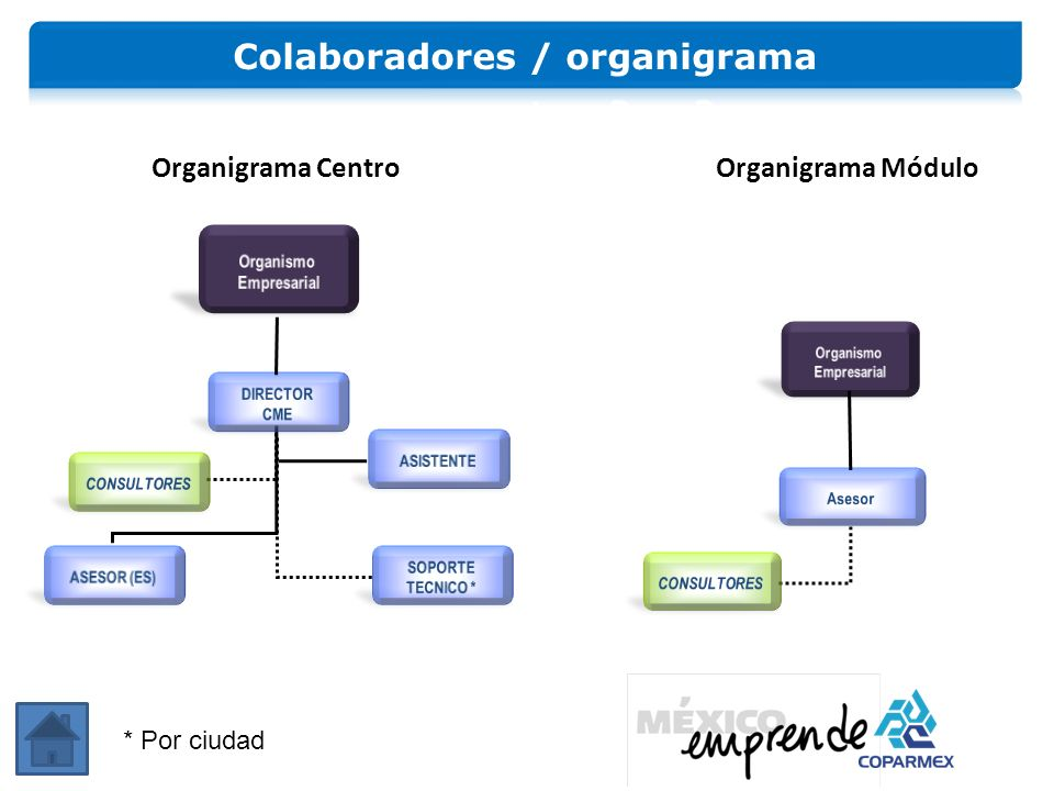 Colaboradores / organigrama